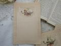 フランスアンティーク白鳩とバラのレターペーパーD
