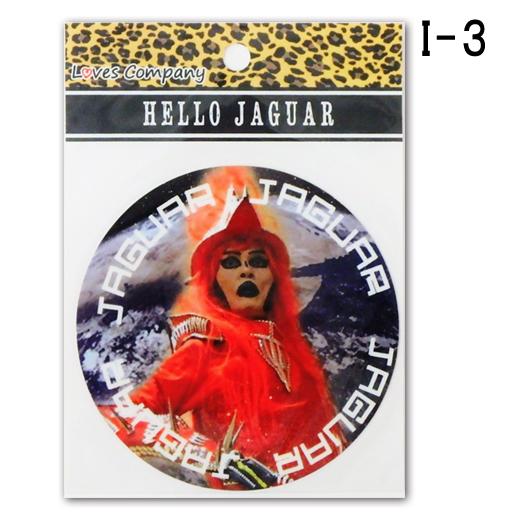 ジャガーi-3