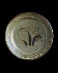 大沼道行 陶石釉八寸リム丸皿