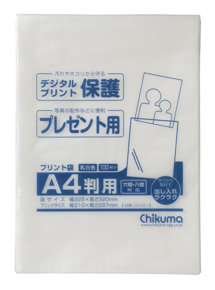 プリント袋 A4 225X320mm 1パック100枚入り