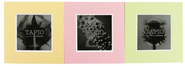タピオ ミニ スクエア カスタード&ピンク&ペールグリーン