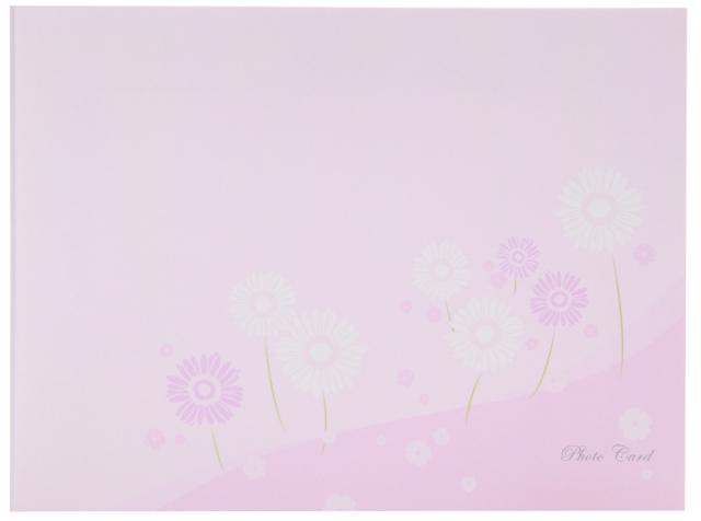 フォトマウントカード 2L ヨコ フラワー / ピンク 2面