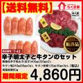 【送料無料】期間限定12/24(日)まで辛子明太子と牛タンのセット