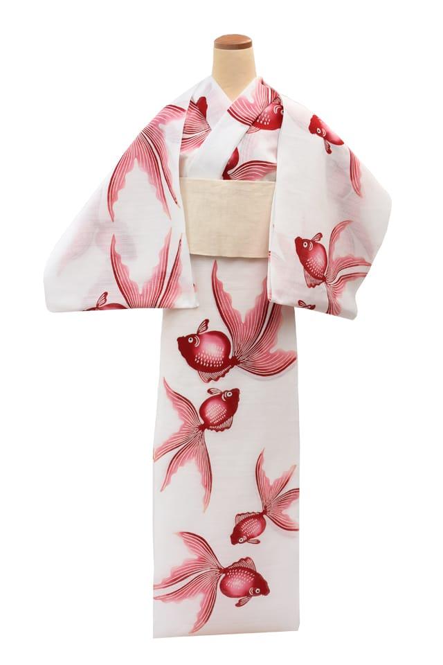 【反物】女性 『綿絽白地』赤色ぼかし金魚