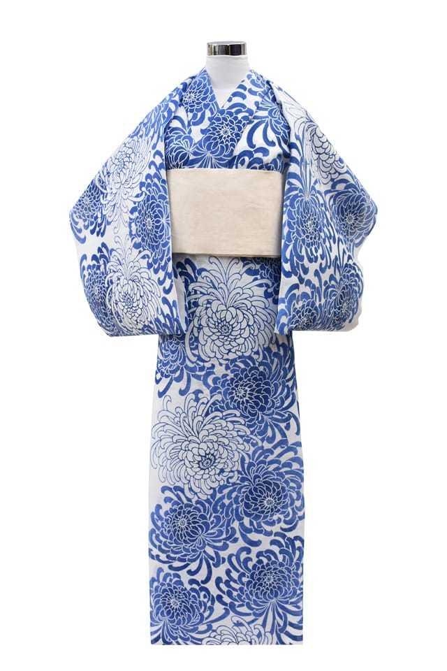 【反物】女性 『綿絽白地』ブルーぼかし菊