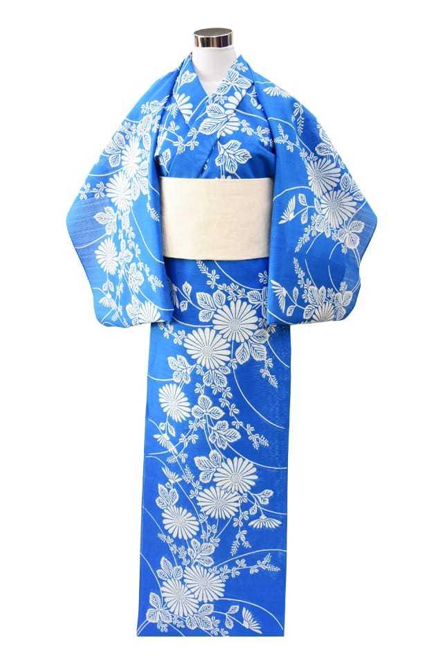 【反物】女性 『綿絽地染』ブルー地菊柄