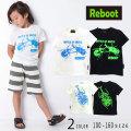 【2019夏物新作♪】Reboot(リブート)カブトムシプリント半袖Tシャツ【メール便送料無料】