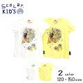 【2019夏物新作♪】ScoLar(スカラー)お菓子プリント半袖Tシャツ【メール便可能】