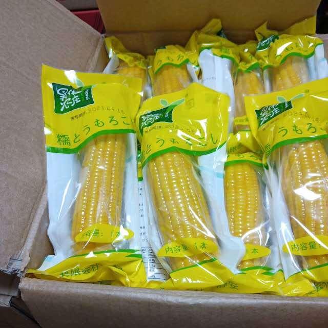 【常温便】軸付き糯とうもろこし/糯玉米 黄色 箱(40本)