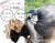 【親子お揃いプレゼント】ベージュサテンとブラックリボンのガールズシュシュ【出産祝い/誕生日/ジュメル神戸/子ども】メイン