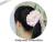 【親子お揃いプレゼント/高級シュシュ】ピンクツイードと白ドットリボンのママシュシュ【出産祝い/ペア/誕生日/ジュメル神戸】画像