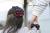 親子お揃いシュシュ(ペアヘアアクセサリー)専門店ジュメル【出産祝い/誕生日/記念】ガールズシュシュメインバナー4