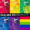 スカラボ 薬用スカルプシャンプー 300ml DAICHI HOSHI KAZE SORA UMI