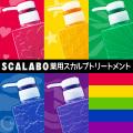 スカラボ 薬用スカルプトリートメント 300ml DAICHI HOSHI KAZE SORA UMI