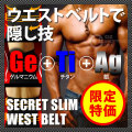 (送料無料) シークレットスリムウエストベルト SECRET SLIM WEST BELT  腹筋矯正ベルト