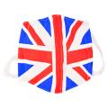 日本製 立体マスク 国旗