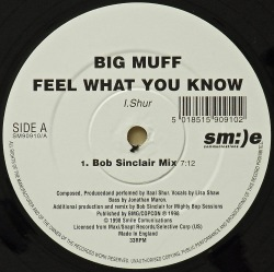BIG MUFF / Feel What You Know