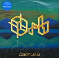 THE ORB / Oxbow Lakes
