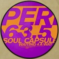 SOUL CAPSULE / Waiting 4 A Way