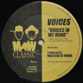 VOICES / Voices In My Mind