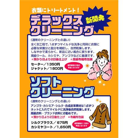 B2ポスター デラックス&ソフトクリーニング