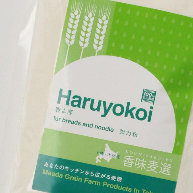 【前田農産の十勝・ほんべつ町産100%小麦粉】春よ恋 1KG