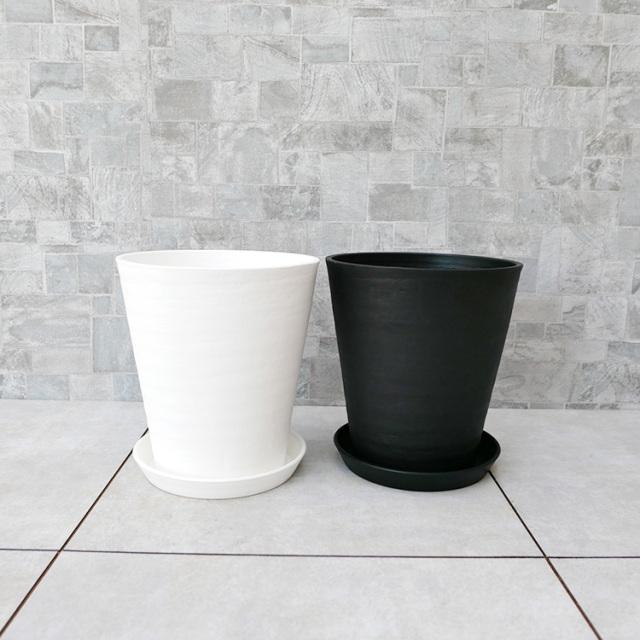 セラート鉢の写真