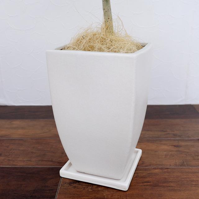 陶器鉢・Mサイズ(マットシリーズ/マーブル)の写真