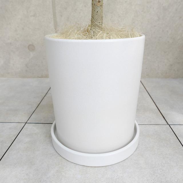 マットシリーズ~上品なツヤ消し加工の陶器鉢~