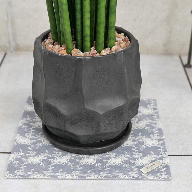 サンスベリア・バキュラリス(ミカド) 陶器鉢植え(カルストシリーズ)