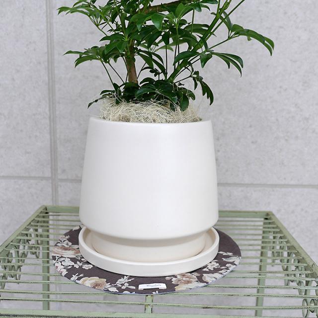 陶器鉢・Mサイズ(マットシリーズ/モルティ)