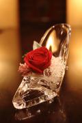 ガラスの靴シリーズ