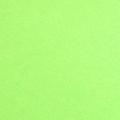 MS-ASBGREN アストロブライトFS(グリーン) (10シートセット) 【鮮やかな蛍光色 スムース 値札やPOP札にも最適 FSC森林認証紙】 ■厚さ0.24(mm) ■インクジェット・レーザー両対応