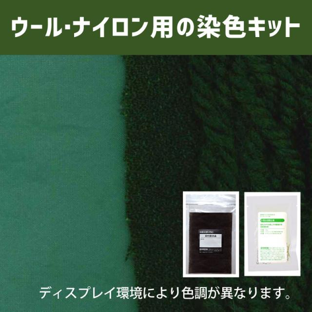 【送料無料】メール便のみ カクタスグリーン CACTUS GREEN 色に染めるウール・ナイロン用の染色キット / そめそめキットPro【059】(25190-059)