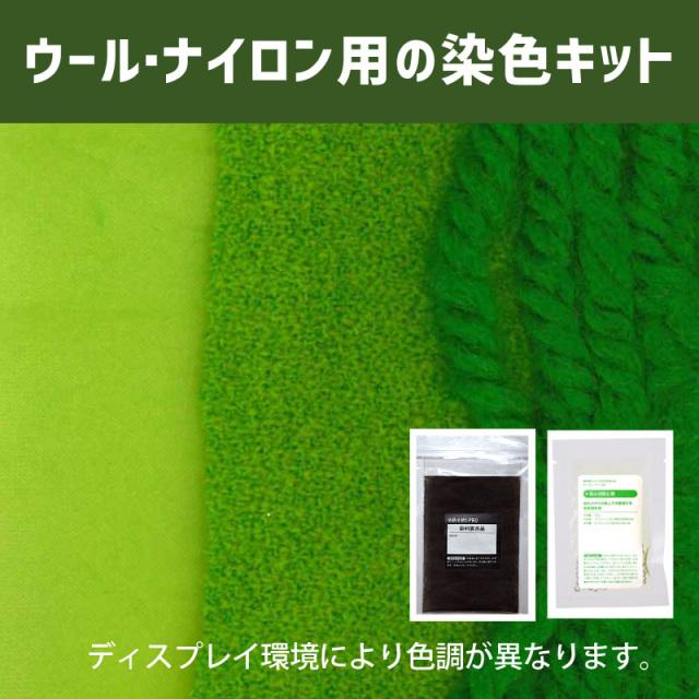 【送料無料】メール便のみ アップルグリーン色に染めるウール・ナイロン用の染色キット / そめそめキットPro【170】(25190-170)