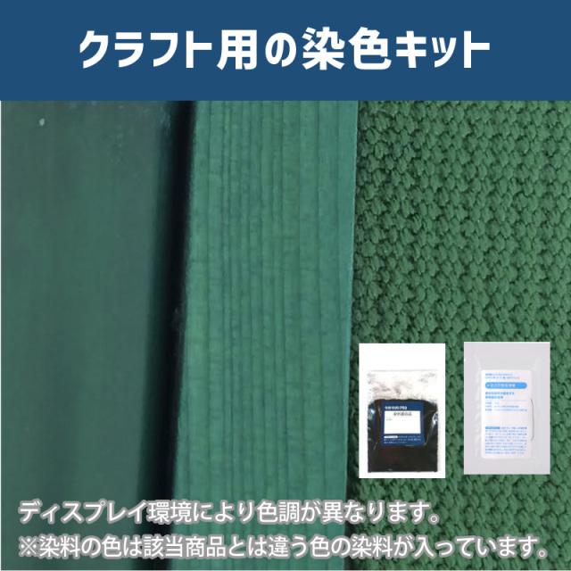 【送料無料】 メール便のみ カクタスグリーン色に染めるクラフト用キット /  染料 そめそめキットProクラフト    【059】(25220-059)