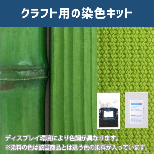 【送料無料】 メール便のみ アップルグリーン色に染めるクラフト用キット /  染料 そめそめキットProクラフト    【170】(25220-170)