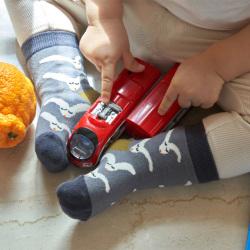 socks appeal/mogu takahashi/ベビーソックス(全9柄)