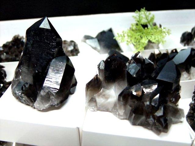 Sサイズ 1個売り アーカンソー産黒水晶ミニクラスター 箱サイズ 約5.5×5.3cm 限定 艶々極上モリオン アメリカ・アーカンソー産