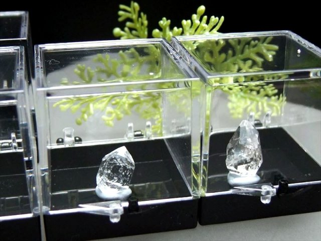 ミニチュア原石シリーズ ハーキマーダイアモンド単結晶 原石 ケース付き コレクションや標本に 一つ一つ手作業による採掘です ハーキマー水晶 レア産地・パキスタン産