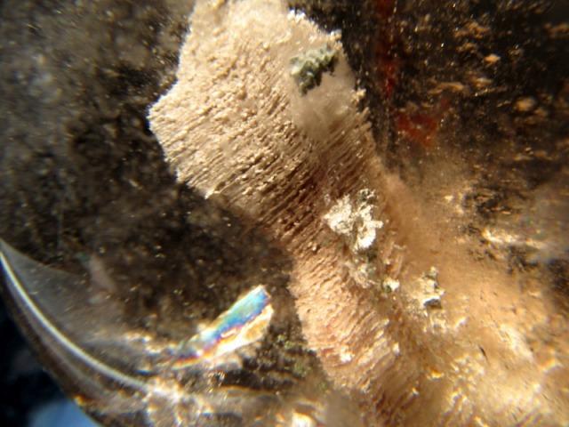 虹入り! 立体千層ガーデン 水晶 丸玉 台座付 直径約63mm 重さ333g 白と茶系の立体千層 景石水晶 ガーデンファントムクォーツ 1点もの ブラジル産