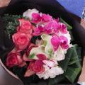 コチョウラン花束