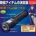 警備装備の決定版!ライトカム! 1.5型LCDモニタ・200万画素高画質カメラ搭載!屋外防滴仕様!【LDR-200PC】