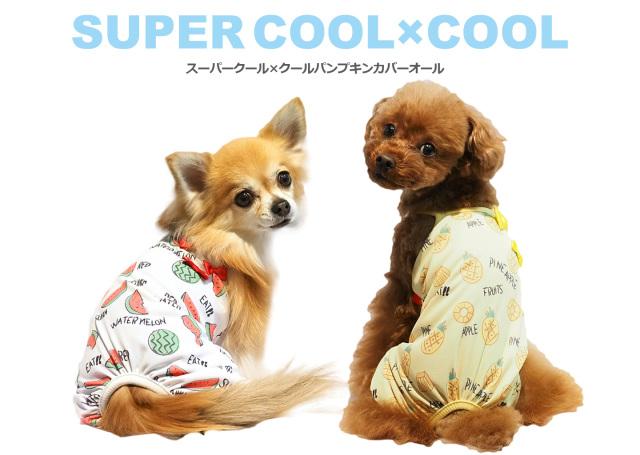 2020夏物新作スーパークール×クール パンプキンカバーオール(2柄)12289[犬服]