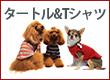 2019秋冬新作タートル&T