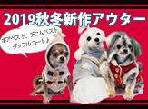 2019秋冬アウタースマホ