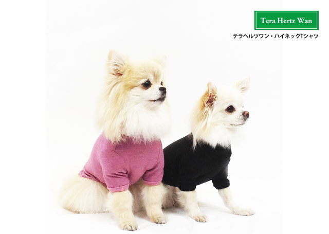 2017テラヘルツワン新作♪テラヘルツワン・ハイネックTシャツ(3色)50051[犬服]