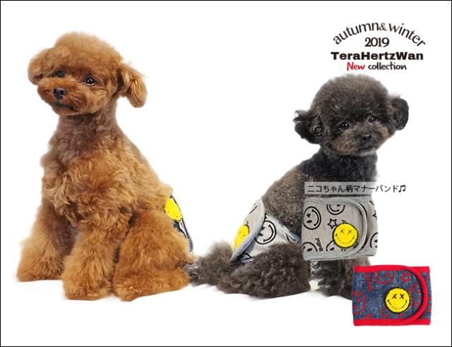 2019クークチュール秋冬新作 テラヘルツワン・スマイルスターマナーバンド (2色)7203[犬グッズ]