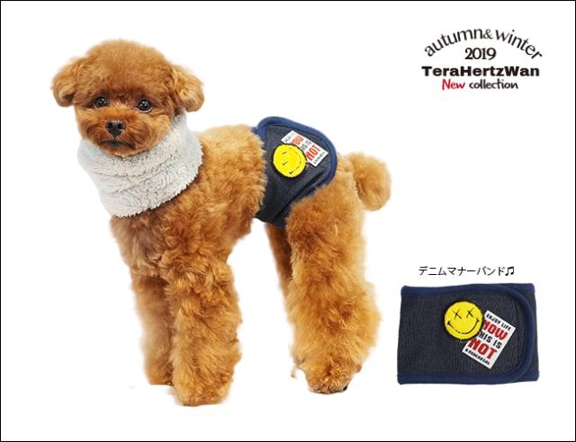 2019クークチュール秋冬新作 テラヘルツワン・デニムマナーバンド (1色)7204[犬グッズ]