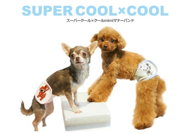 2020夏物新作スーパークール×クール mimiマナーバンド(2柄)7212[犬用マナーバンド]